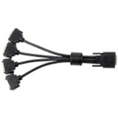 Matrox KX20-to-DVI quad-monitor adapter cable - Zwart