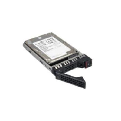 Lenovo interne harde schijf: 1TB SATA HS - Zilver