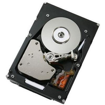 IBM 900GB SAS 10K Interne harde schijf