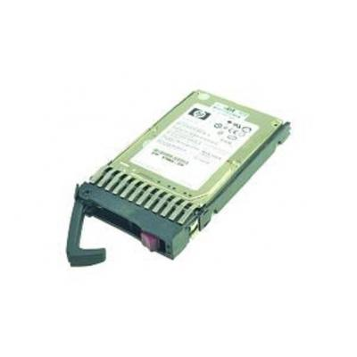 2-power interne harde schijf: 146GB SCSI HDD
