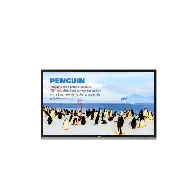 Benq interactieve schoolborden & toebehoren: RP552H - Zwart
