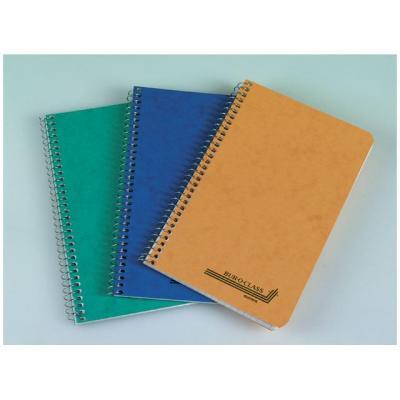 Aurora register: Notitieboek 60bl 105x160 ruit spir/pk 20