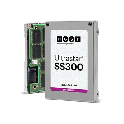 Western Digital Ultrastar SS300 SSD - Zilver
