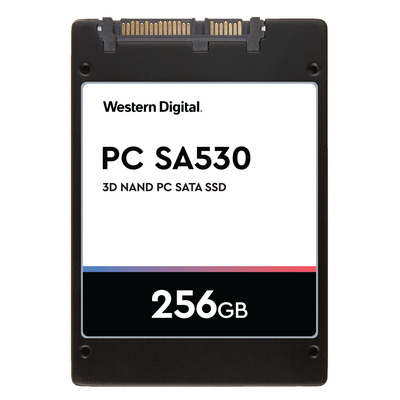 Sandisk SDATB8Y-256G solid-state drives