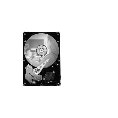 Seagate ST3320820SCE interne harde schijf