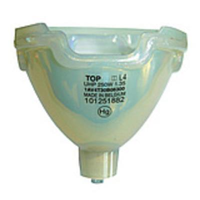 golamps GL326 beamerlampen