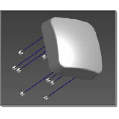Extreme networks 30705 Antennes