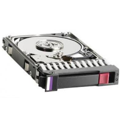 HP 300GB SAS Interne harde schijf