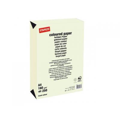 Staples papier: Papier SPLS A4 160g lichtgroen/pak 250v
