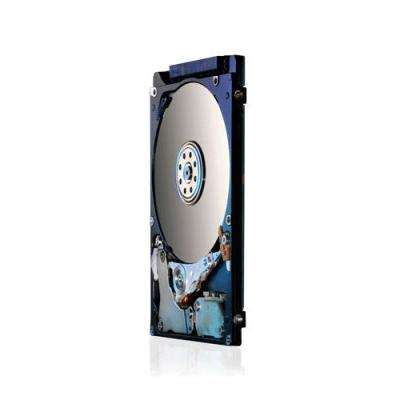 HGST 0J43105 interne harde schijf