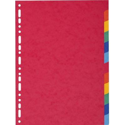 Exacompta schutkaart: Nature Future, A4, Glanskarton - Multi kleuren