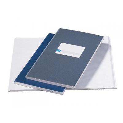 Atlanta Kasboek 100 bladen 2x2geldkolom grijs Register