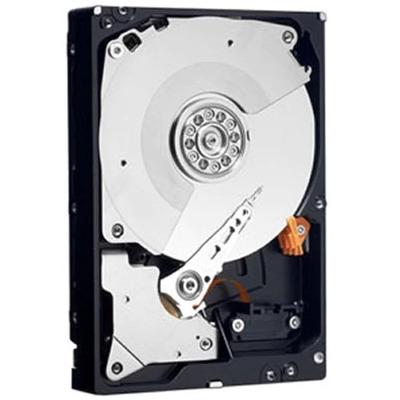 DELL HD 250GB S2 7.2K HIT JUPITER interne harde schijf