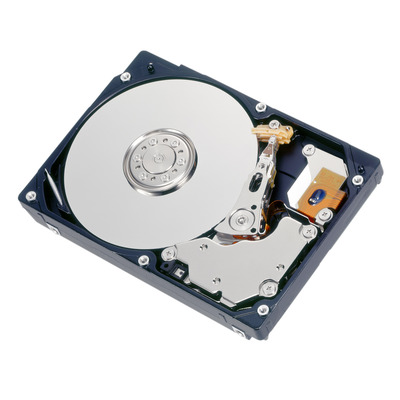 """Fujitsu 900GB, 10000rpm, SAS, 2.12.7 cm (5"""") , Hot plug Interne harde schijf"""