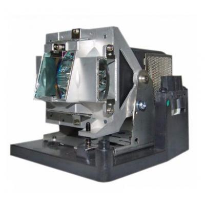 Vivitek Replacement lamp for D795WT Projectielamp