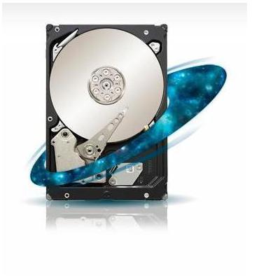 Seagate Constellation ES SAS 6Gb/s 500-GB Hard Drive Interne harde schijf
