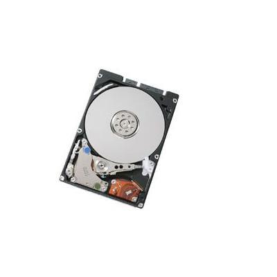 Acer interne harde schijf: 160GB 5400rpm SATA hard disk