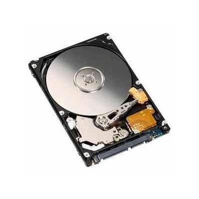 IBM 81Y9738 interne harde schijf