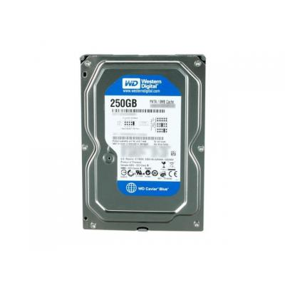 Western digital interne harde schijf: Caviar Blue 250GB (Refurbished ZG)