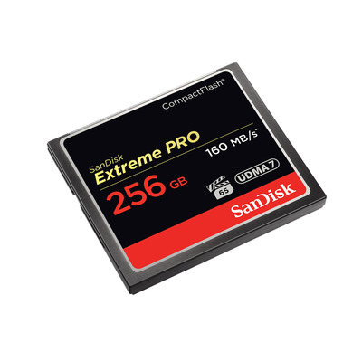 SanDisk Extreme PRO, 256GB Flashgeheugen - Zwart