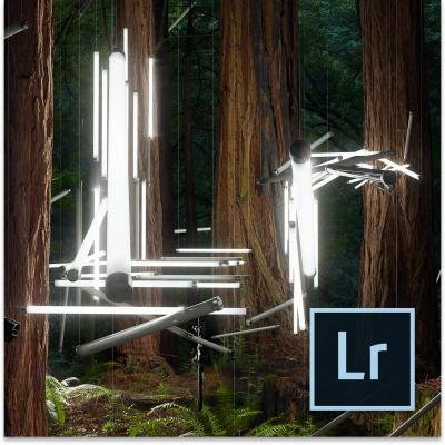 Adobe grafische software: Photoshop Lightroom 6