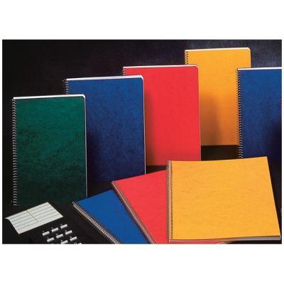 Aurora register: Notitieboek 40bl 75x110 ruit spir/pk 20
