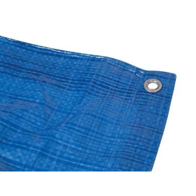 Perel 2 x 4 m, 55 g/m² - Blauw