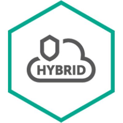 Kaspersky Lab Hybrid Cloud Security Software licentie