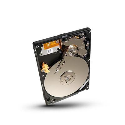 Seagate STBD1000100 interne harde schijf