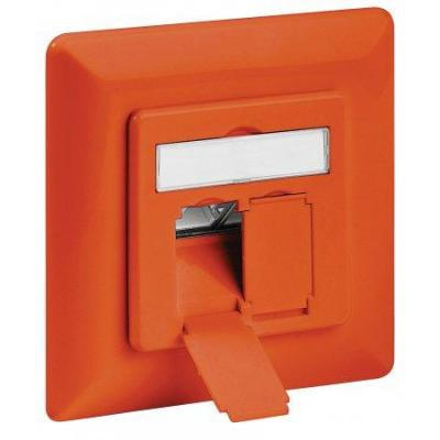 Intellinet wandcontactdoos: 2-RJ45, FTP, 22 to 26 AWG - Oranje