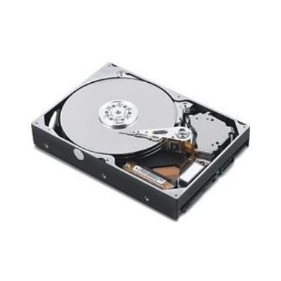 Lenovo 320GB 5400RPM HDD Interne harde schijf