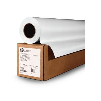 "HP Professional Satin Photo Paper, 54""x100' grootformaat media"