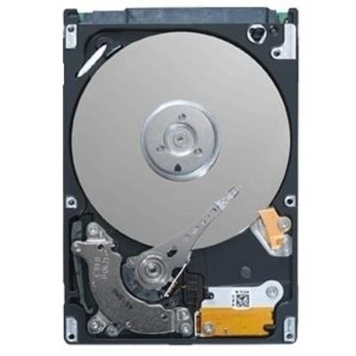 Seagate ST9500421AS-RFB interne harde schijven