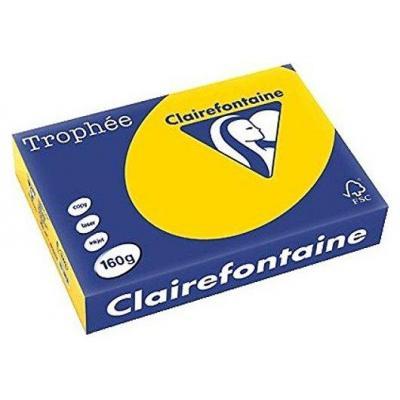 Clairefontaine Trophée Pastel A4 goudgeel, 160 g, 250 vel Papier