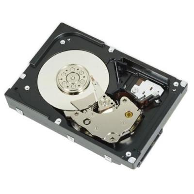Dell interne harde schijf: 1.2TB SAS