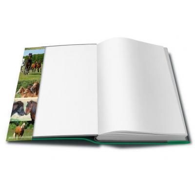 Herma tijdschrift/boek kaft: 21300 - Groen
