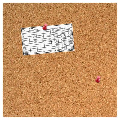 Desq planningsysteem: 35.5x35.5x1.7cm, 5 punaises - Bruin