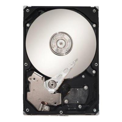 Seagate ST3300656SS-RFB interne harde schijven