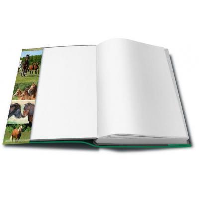 Herma tijdschrift/boek kaft: 21267 - Groen