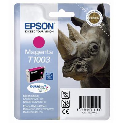 Epson C13T10034010 inktcartridge