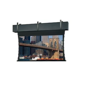 Da-Lite 99895 projectiescherm