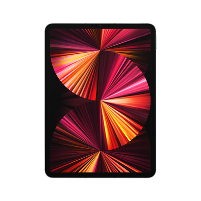 Apple iPad Pro 11-inch (2021) Wi-Fi + Cellular 2TB Space Grey Tablet - Grijs