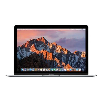 Apple laptop: MacBook - Grijs