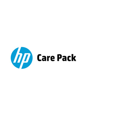 Hewlett Packard Enterprise U4AJ6E IT support services