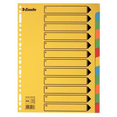 Esselte karton: tabblad, karton - Multi kleuren