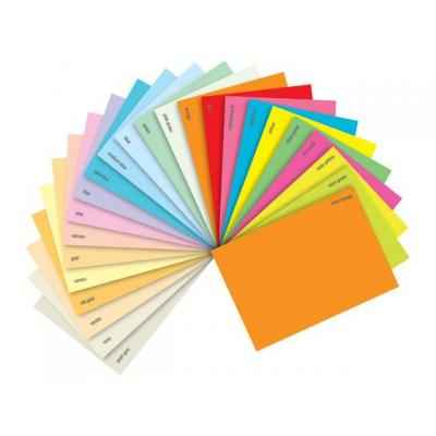 Staples papier: Papier SPLS A4 120g roze/pak 250v