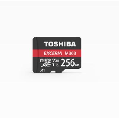 Toshiba Exceria M303 256GB Flashgeheugen - Zwart