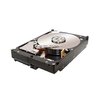 Seagate ST32000644NS-RFB interne harde schijf