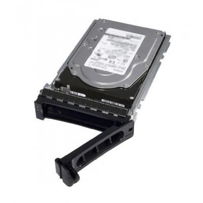 """Dell 10TB, SAS, 8.89 cm (3.5"""") interne harde schijf"""