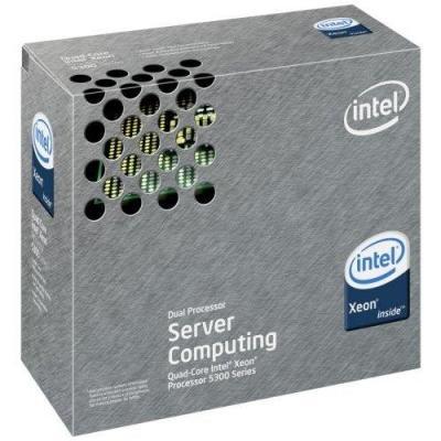 IBM Intel Xeon Processor X5355 processor
